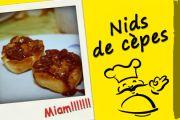 Nids de cèpes