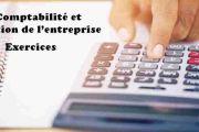 Exercices Comptabilité et gestion de l'entreprise