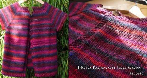 Noro Kureyon top down